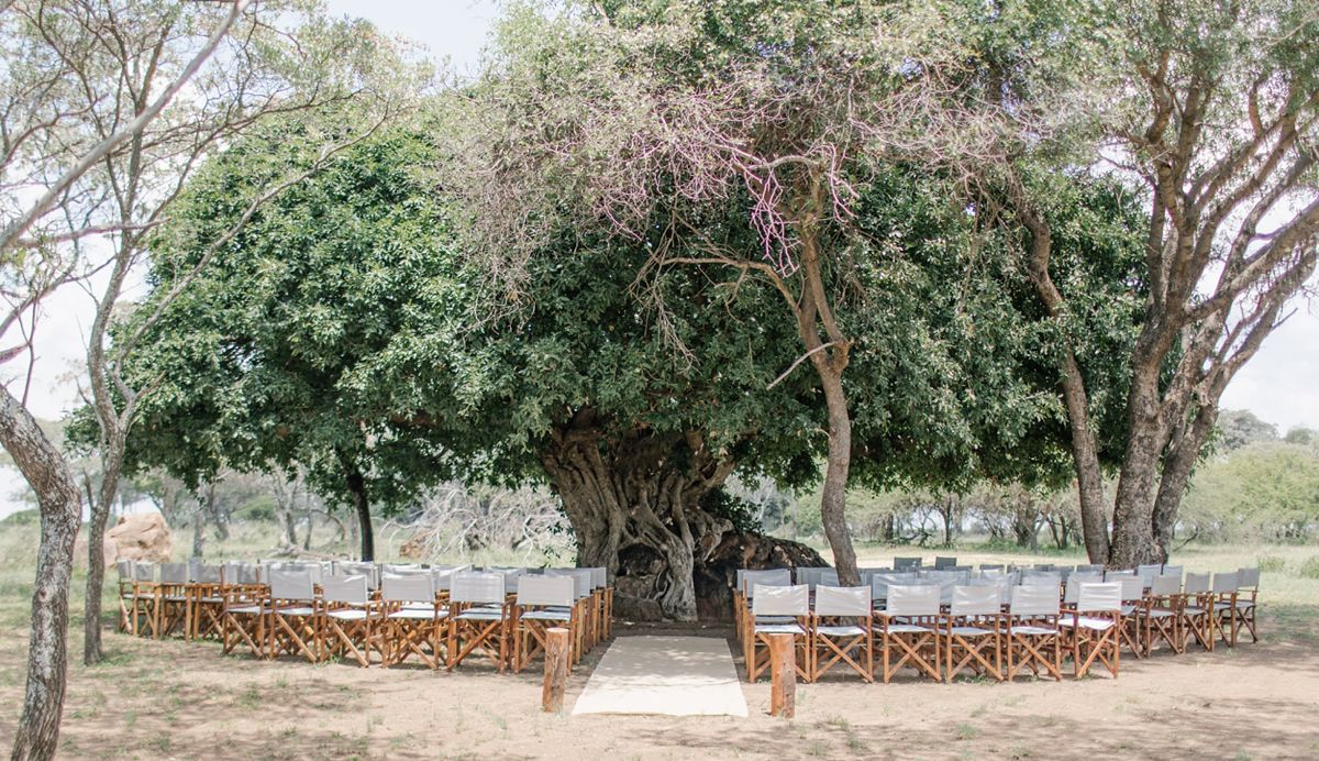 The Best Bushveld Wedding Venues in South Africa -   15 wedding Venues south africa ideas