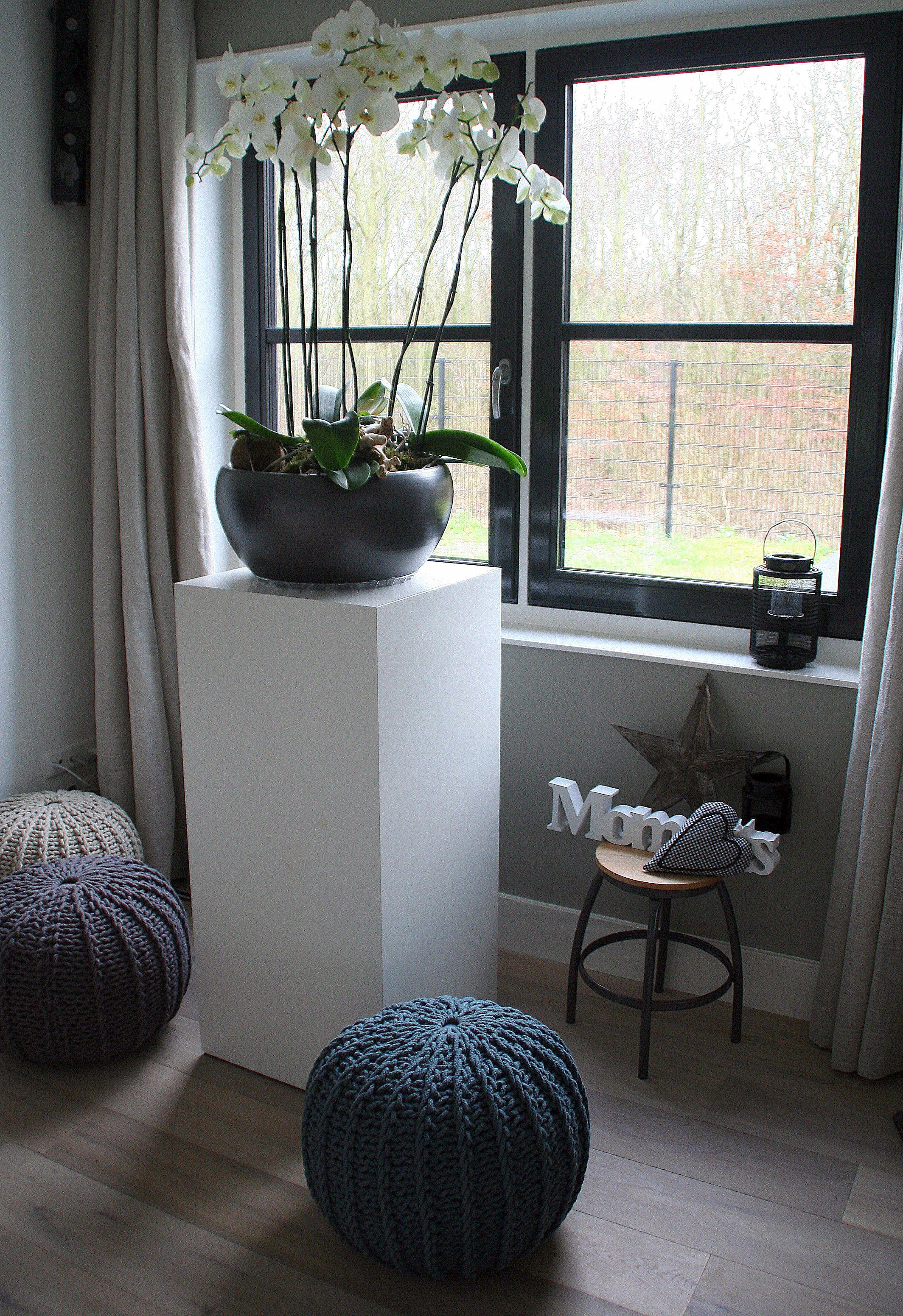 Grote pot met oridee n op zuil bloemen kamerplanten pinterest decoratie kamerplanten en - Schilderij decoratie voor woonkamer ...
