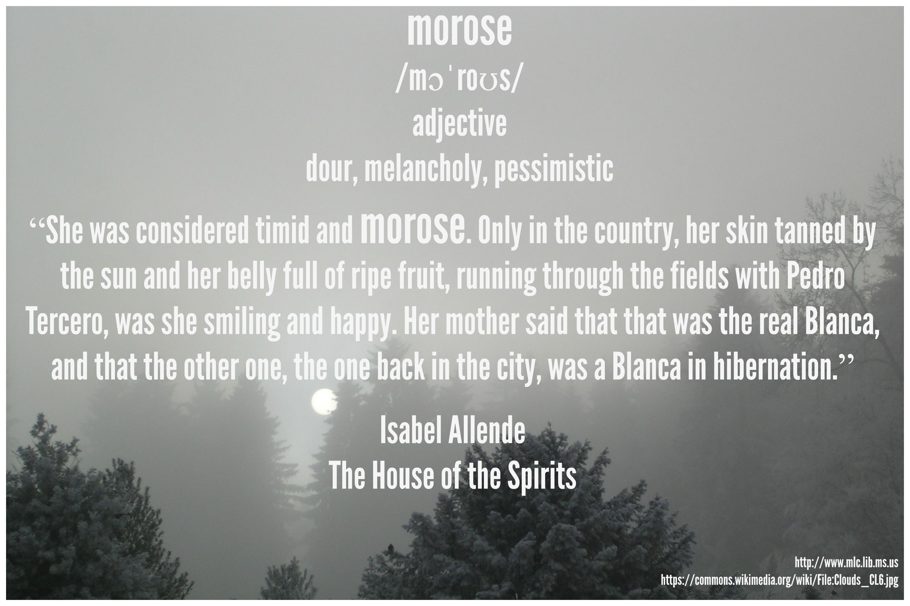 Morose Means Dour Melancholy And Pessimistic Read It In Isabel