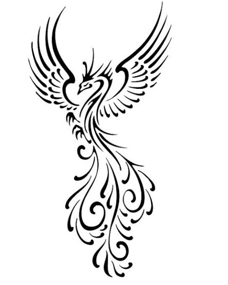 Phoenix tattoo idea black line tattoos pinterest tattoo phoenix tattoo idea black line buycottarizona