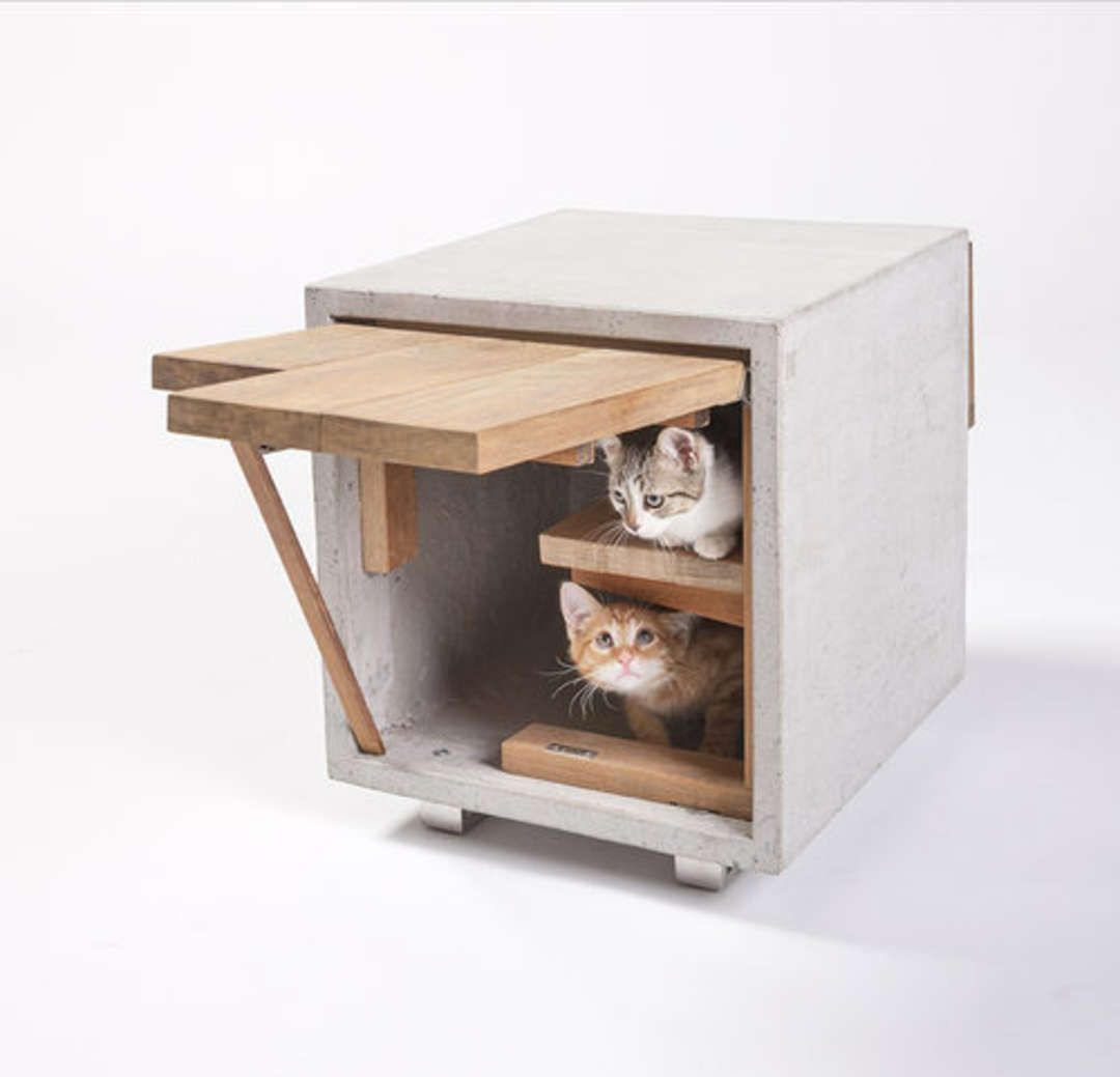 LA Architects Design 14 Custom-Built Cat Homes - Architizer | arch ...