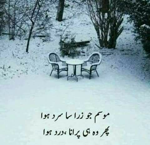 Pin By Muhammad Zaman Sikandar On Tox N Pinterest Urdu Poetry