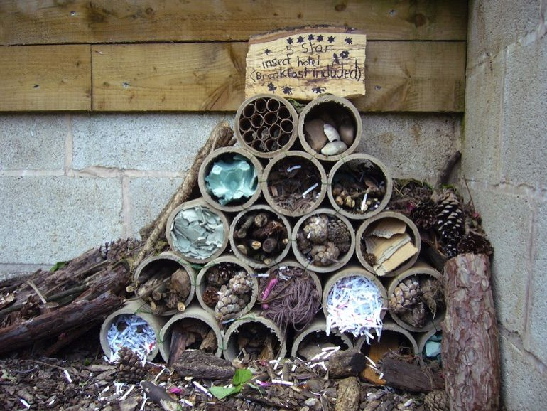 Bug hotel made from cardboard tubes Bug hotel, Insect