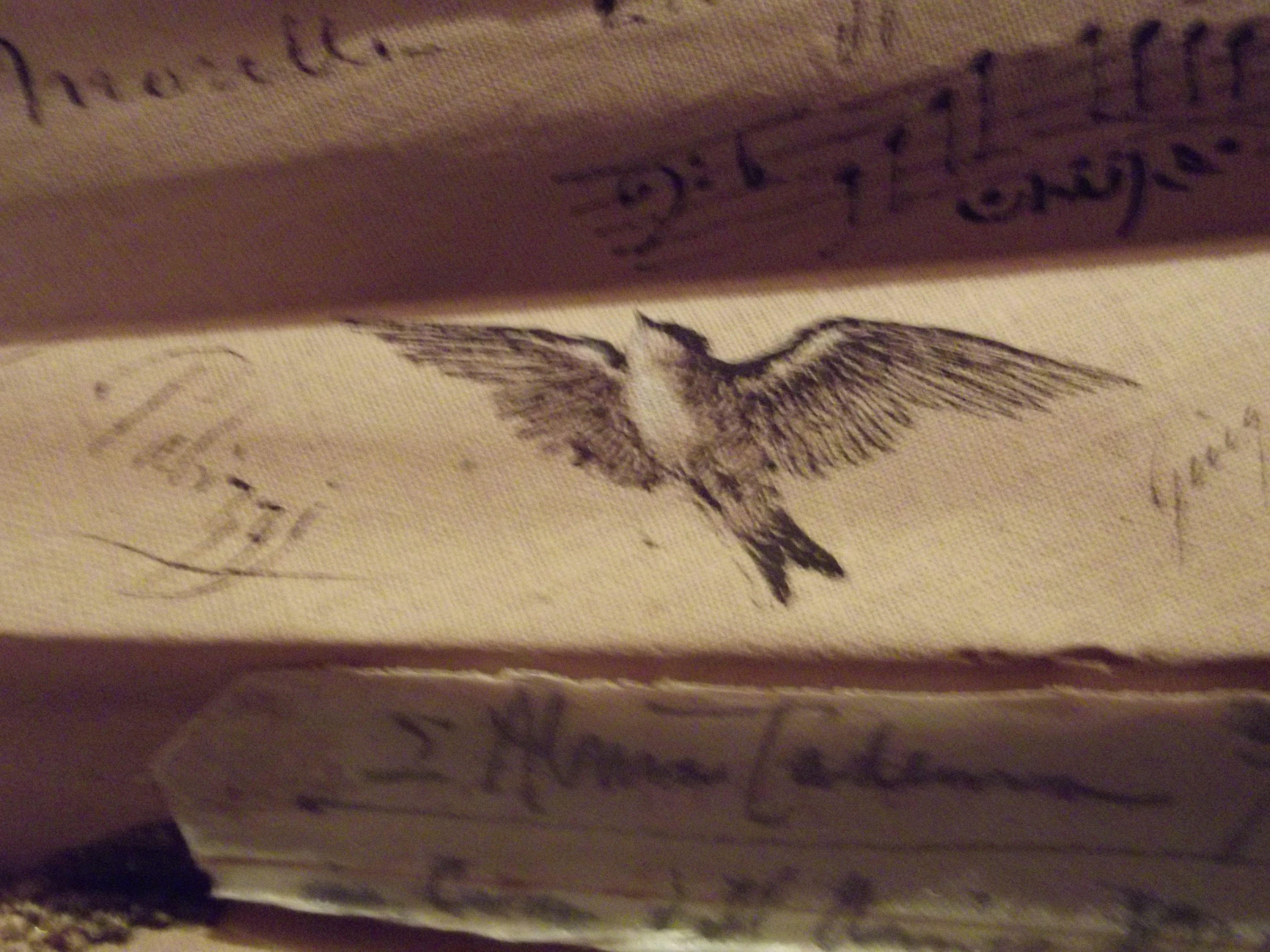 """Particolare del ventaglio """"Libro d'oro"""". China firmata da Filippo Palizzi"""