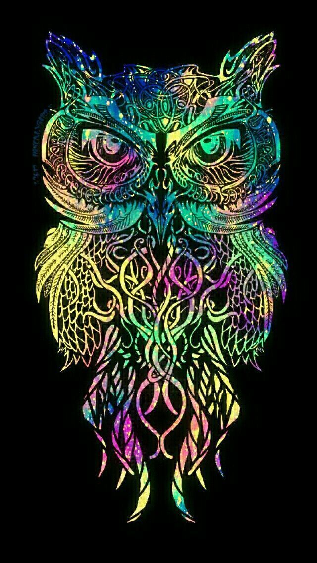 Wallpaper Colorful Tribal Owl Galaxy Iphone Android Wallpaper I Created For The Owl Wallpaper Owl Wallpaper Iphone Colorful Tribal