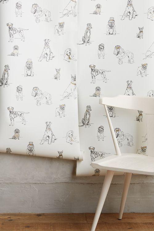Blue Dog Wallpaper Thibaut Wallpaper Best Friend Wallpaper Friends Wallpaper