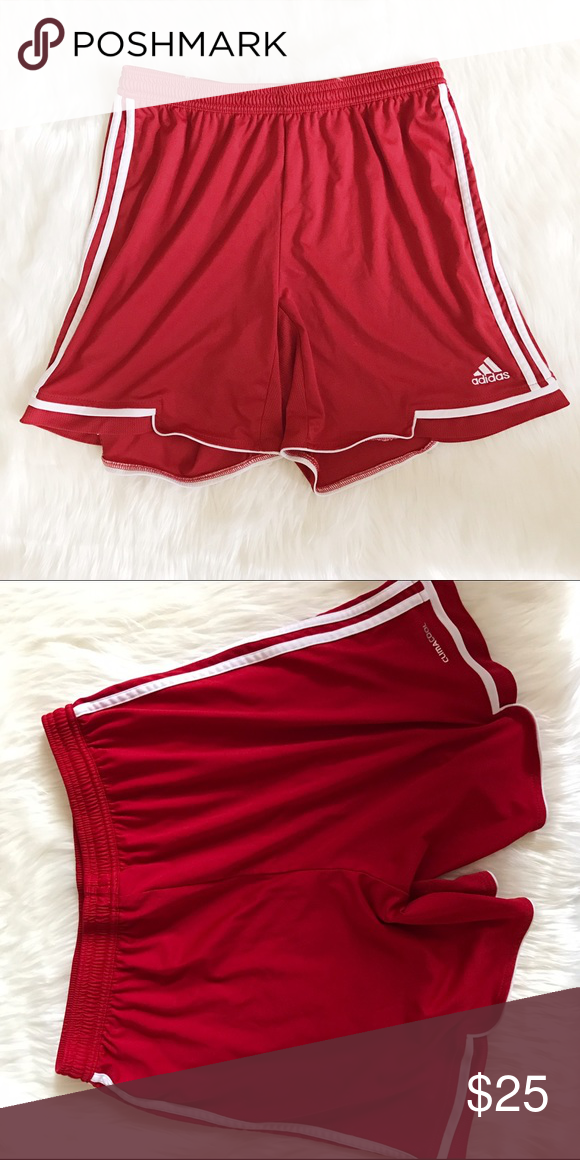 """Adidas Climacool shorts! Excellent condition, size Large. Waist across 14"""" Waist down 15.5"""" Inseam 7"""" Adidas Shorts"""