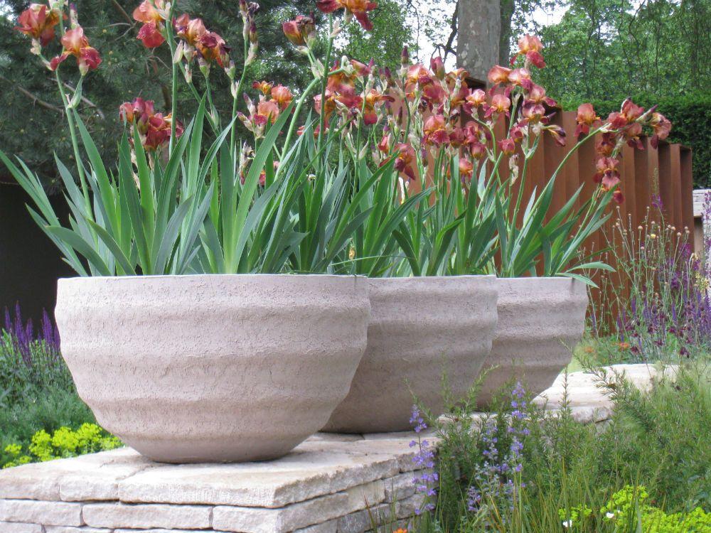 Fiori E Piante Da Vaso Per Il Balcone O In Giardino Sceglile Così