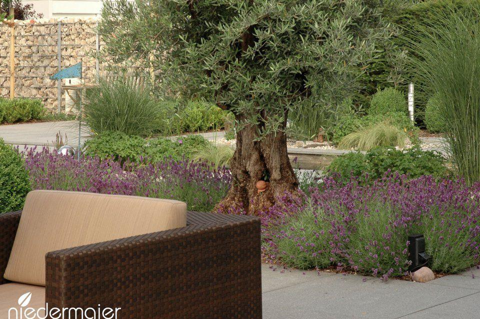 Repräsentativer Stadtgarten - Gartendesigns - Niedermaier Gärten