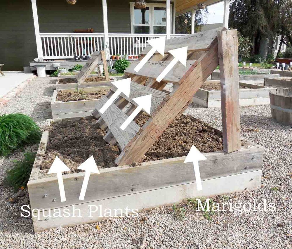 Raised Beds are the Rage! Idea Box by Barb Rosen