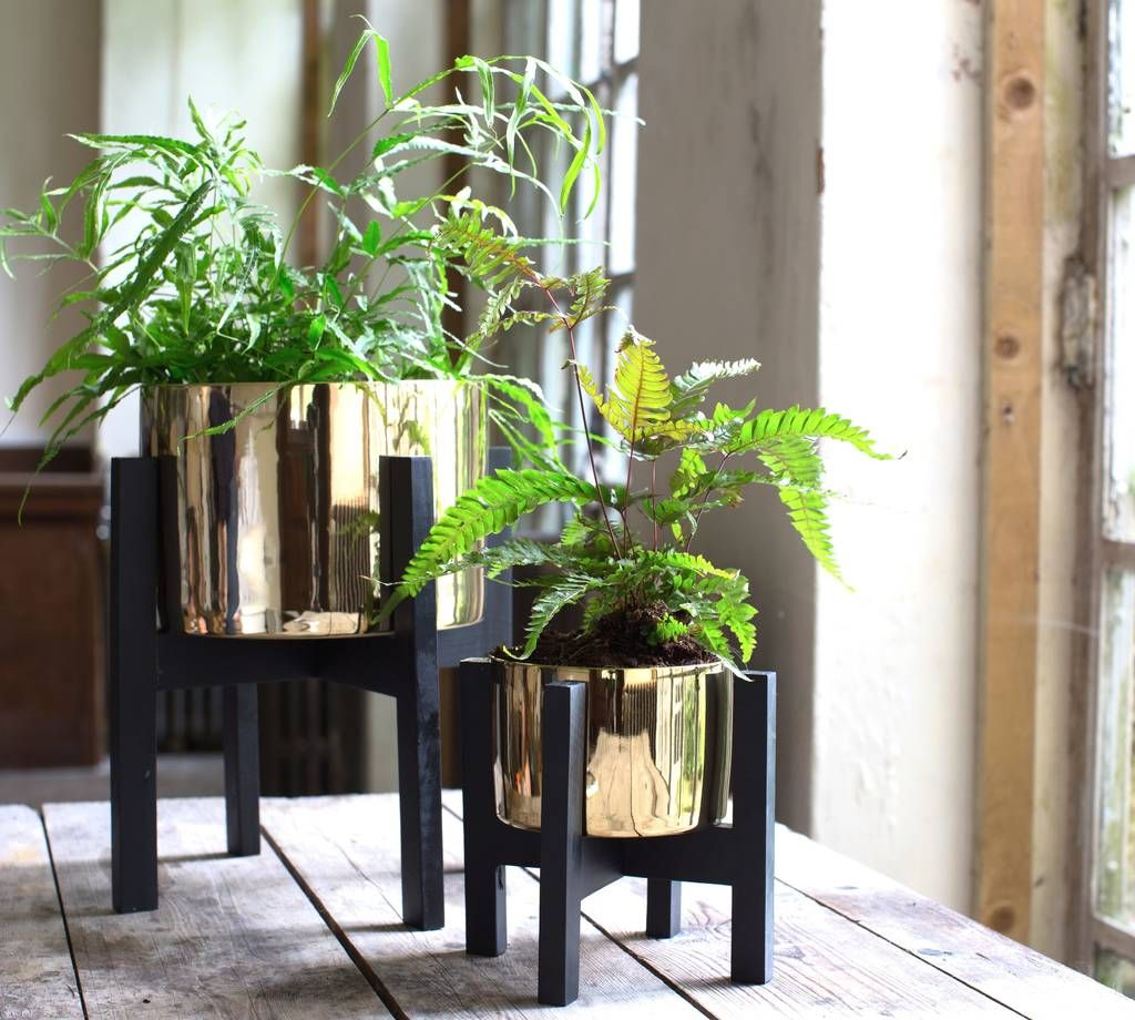 Are You Interested In Our Gold Plant Pot On A Stand With Our