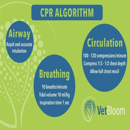 CPR reference book from Vetbloom #VetTechLife