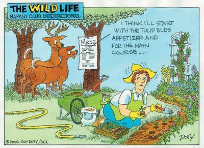 TheEasyGarden - Gardening Forum / Garden humor thread ...