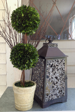 Preserved Boxwood Trees Double Ball Topiary 30 Inch