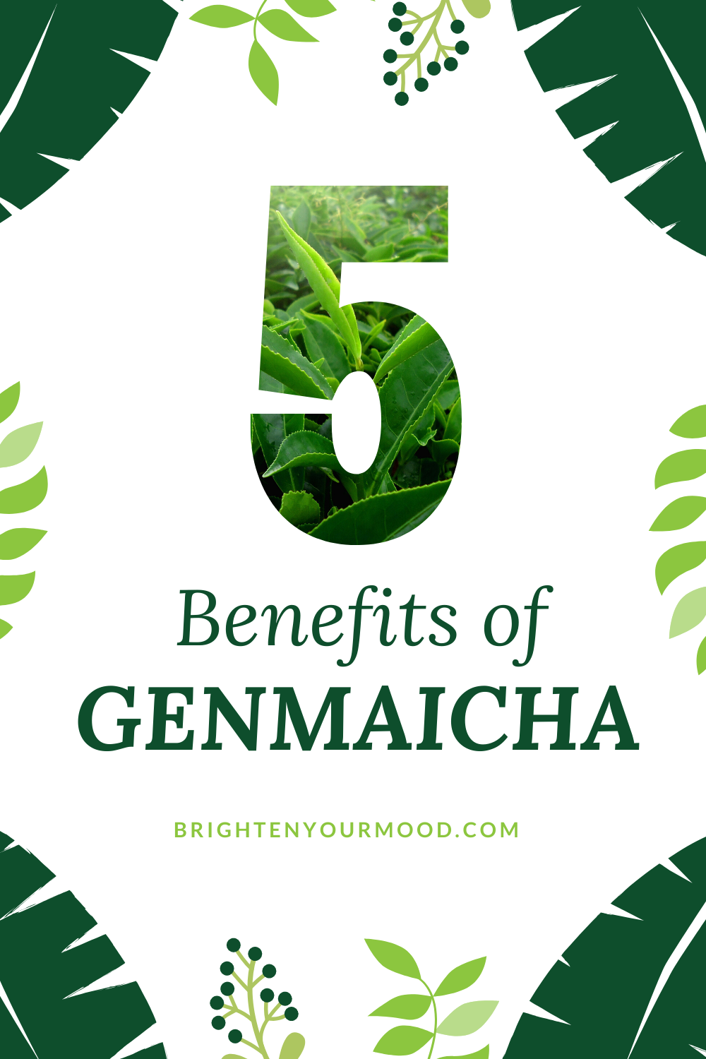 What Are The Benefits Of Genmaicha Genmaicha Herbal Healing Health Tea