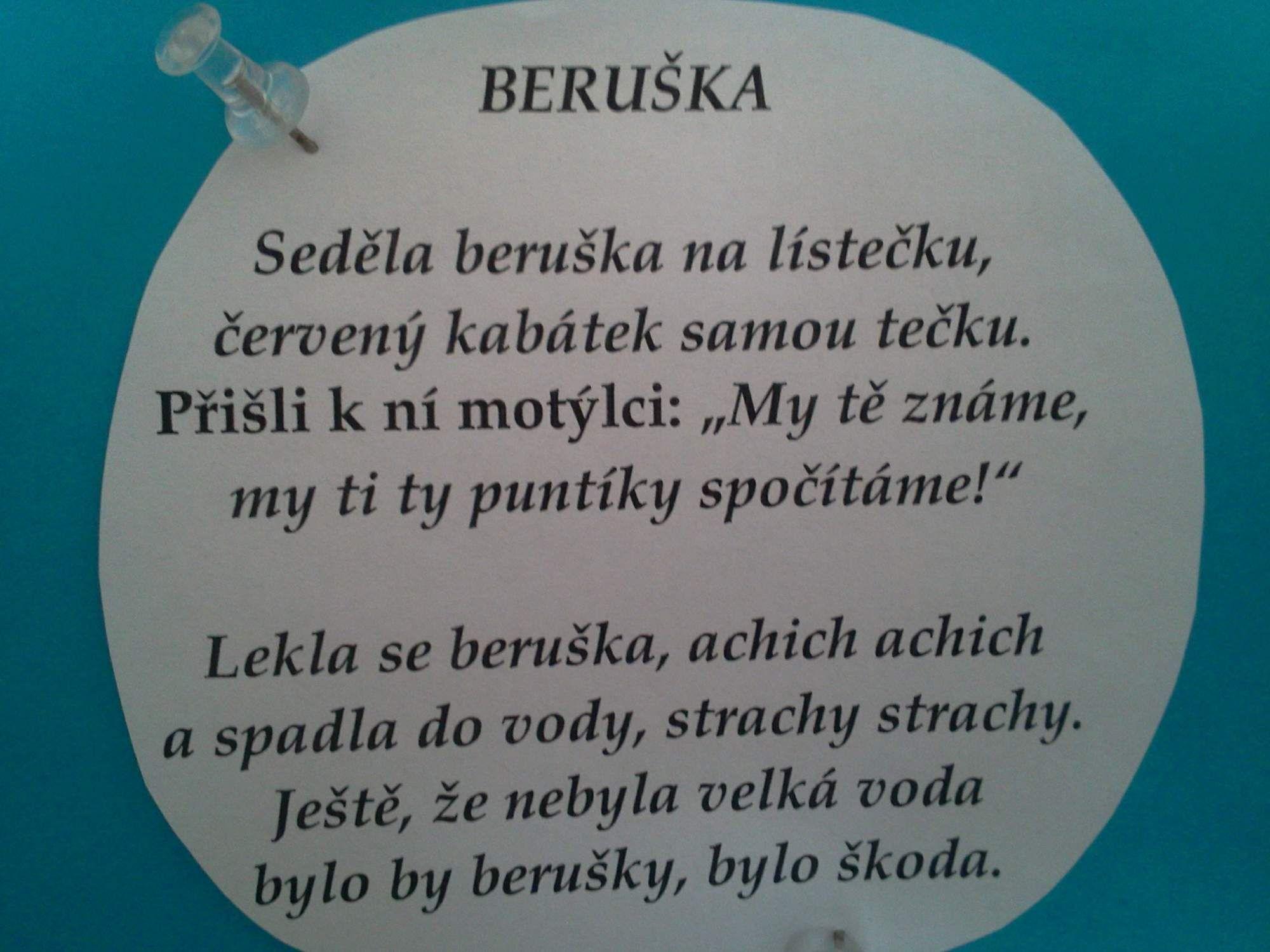 zajickove6trida   Básničky a písničky o hmyzu – rajce.net
