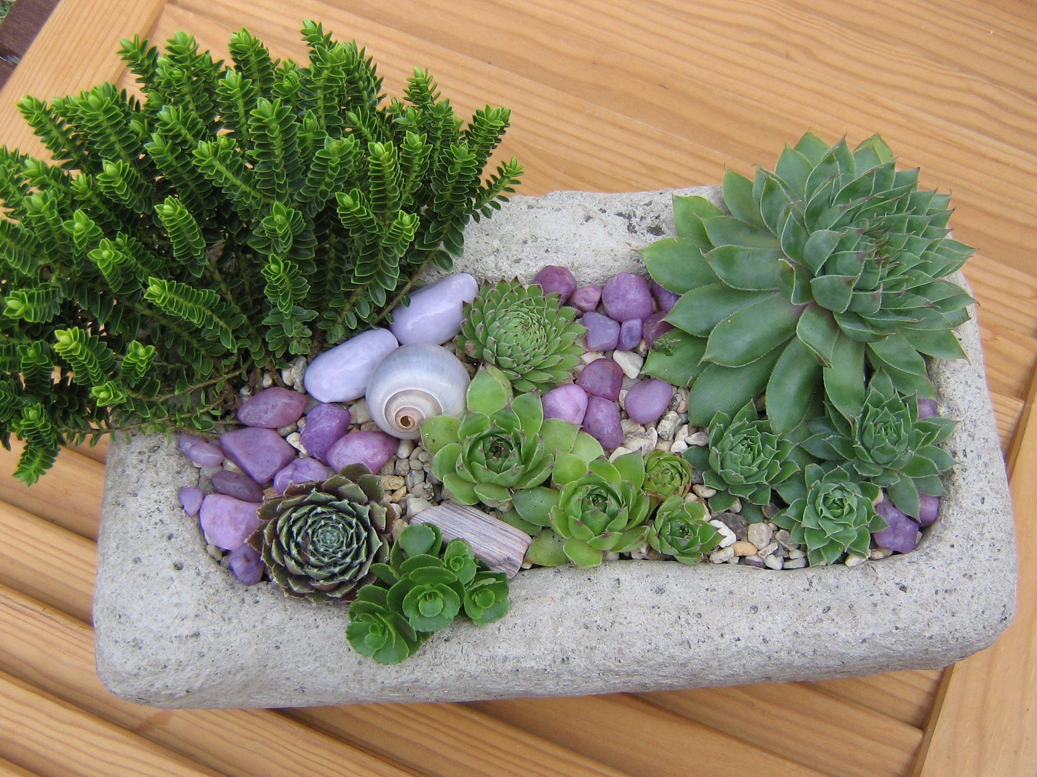 Luxus Gartendeko Beton Ideen