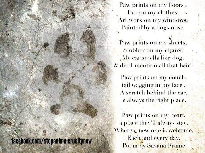 Paw prints on my heart, a place they\'ll always stay! Poem by Savana ...