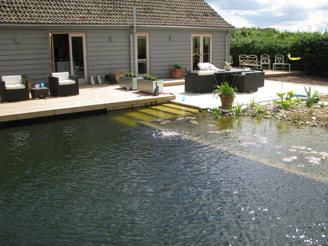 DIY organic swimming pools chemical free and a fraction of the cost