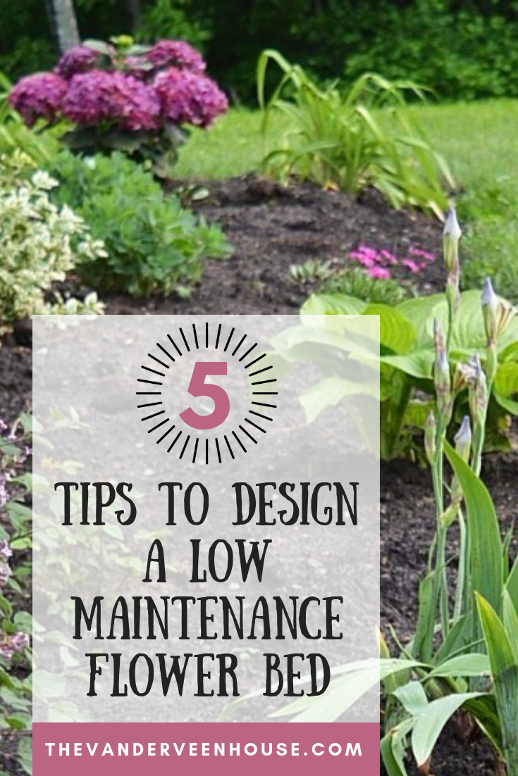 The Best Tips For Designing And Planting A Low Maintenance Flower