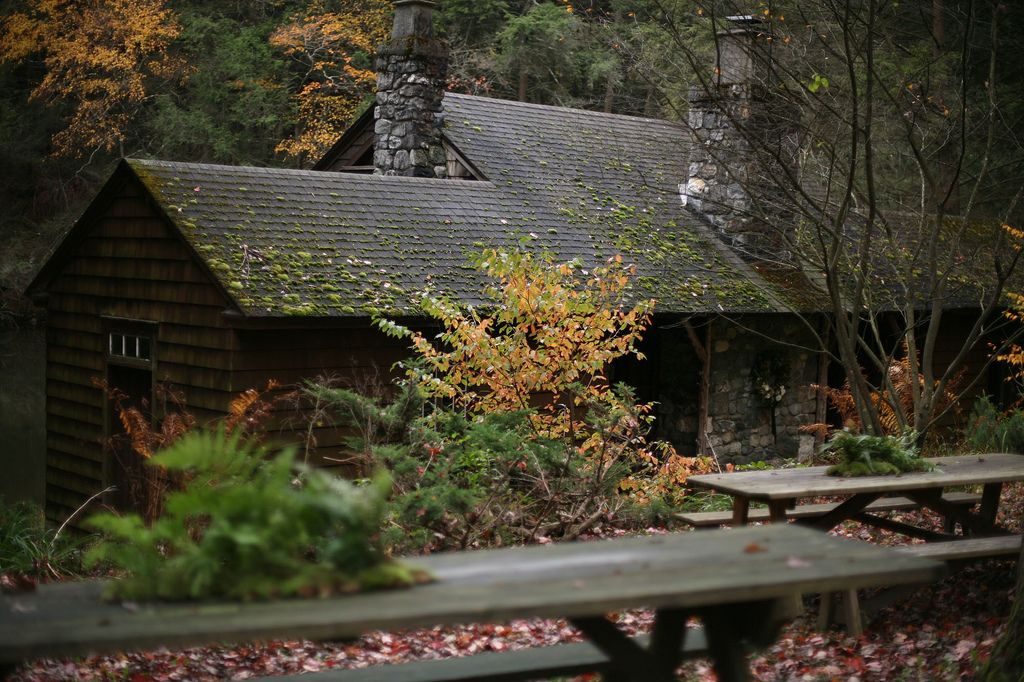 a house in the woods like this;)