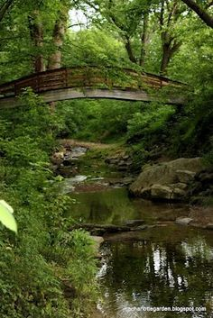 Inside the Botanical Gardens at UNC Asheville, North Carolina.  Go to www.YourTravelVideos.com or just click on photo for home videos and much more on sites like this.