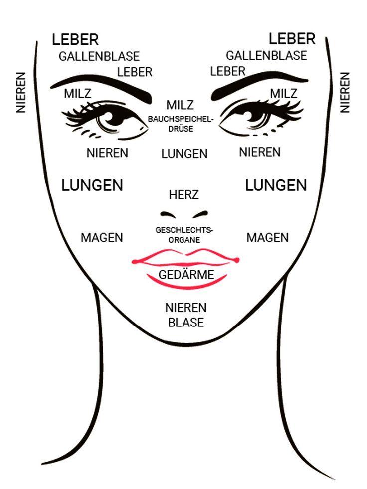 Was dein Gesicht über die Gesundheit deiner Organe verrät ...