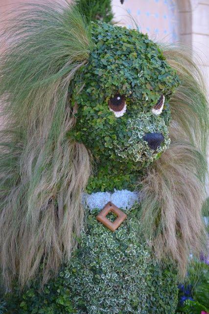 Figuras con arbustos poda ornamental o poda topiaria for Arbustos en jardines