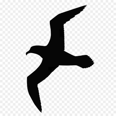 Resultado De Imagen Para Gaviotas Volando Dibujos Gaviotas Volando Pajaros Volando Volar