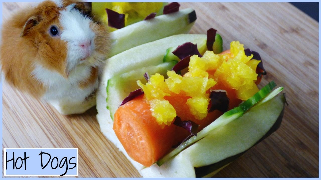 Pin On Guinea Pig Goals