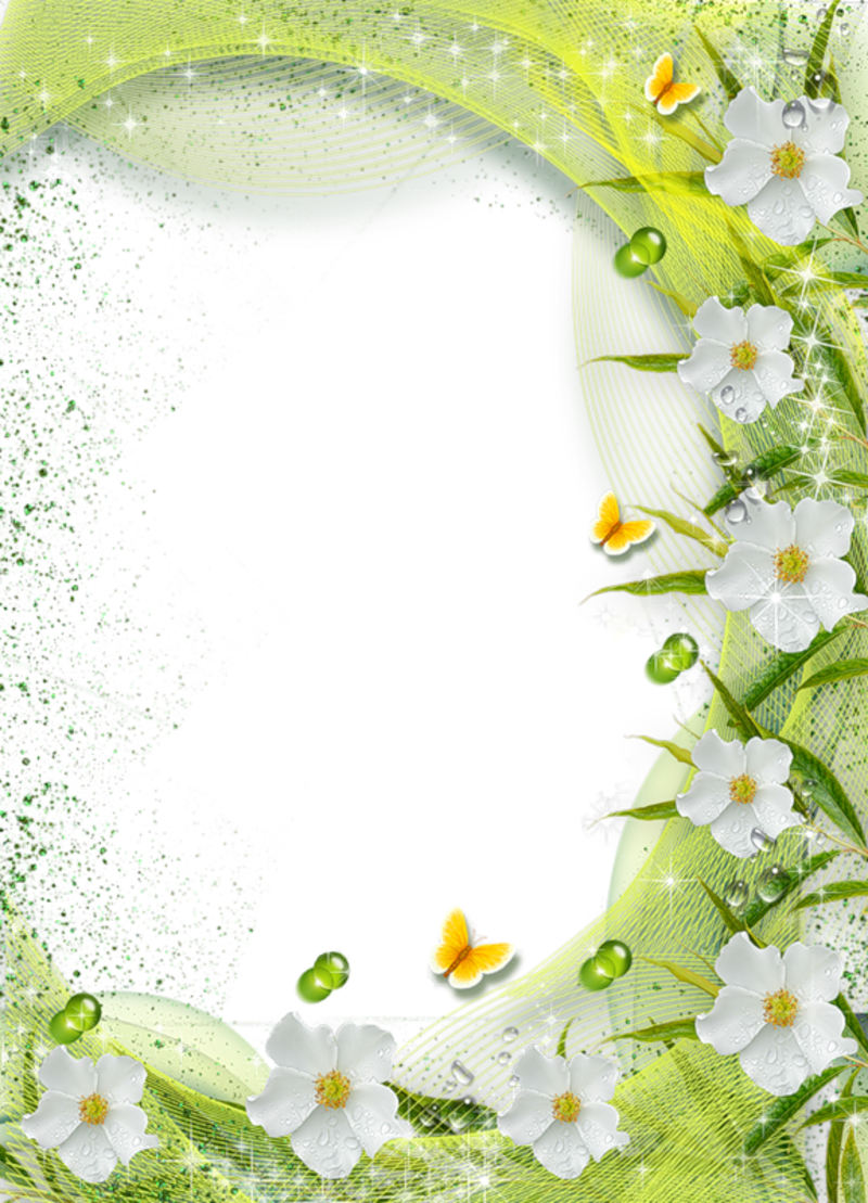 Beautiful green transparent photo frame with white flowers beautiful green transparent photo frame with white flowers izmirmasajfo