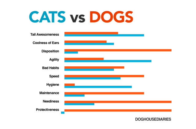 comparing cats and dogs Cats vs dogs there comes a time in most people's life when they decide to get a pet many people prefer to get an exotic animal such a snake, a bird, or a rodent.