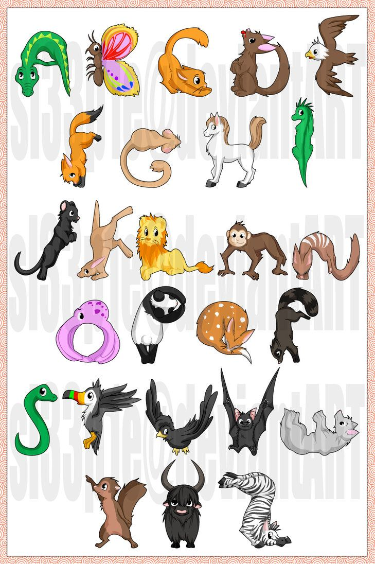Animal Alphabet The Name Of Each Animal Starts With The Letter