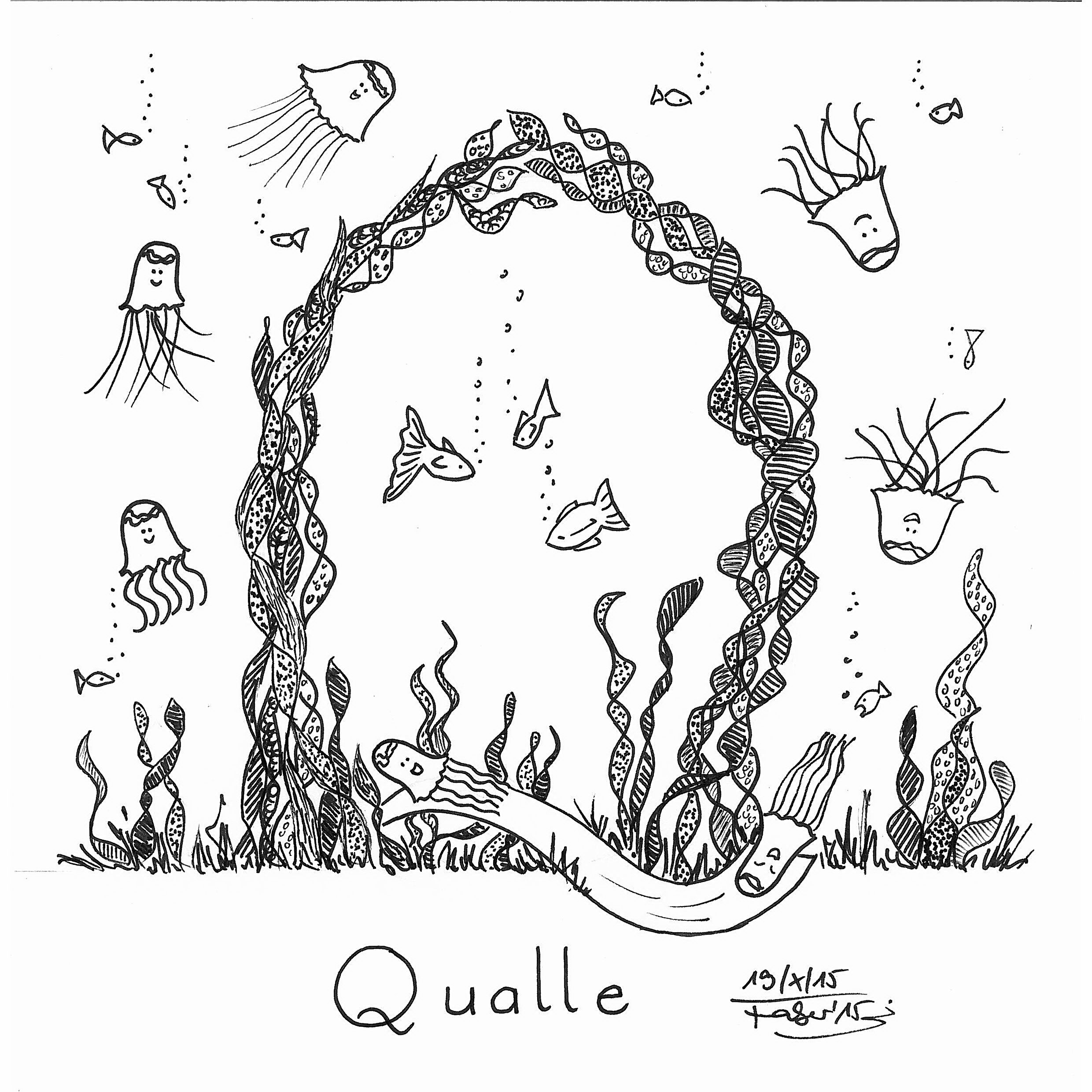 q is for qualle jellyfish in german  illustration for