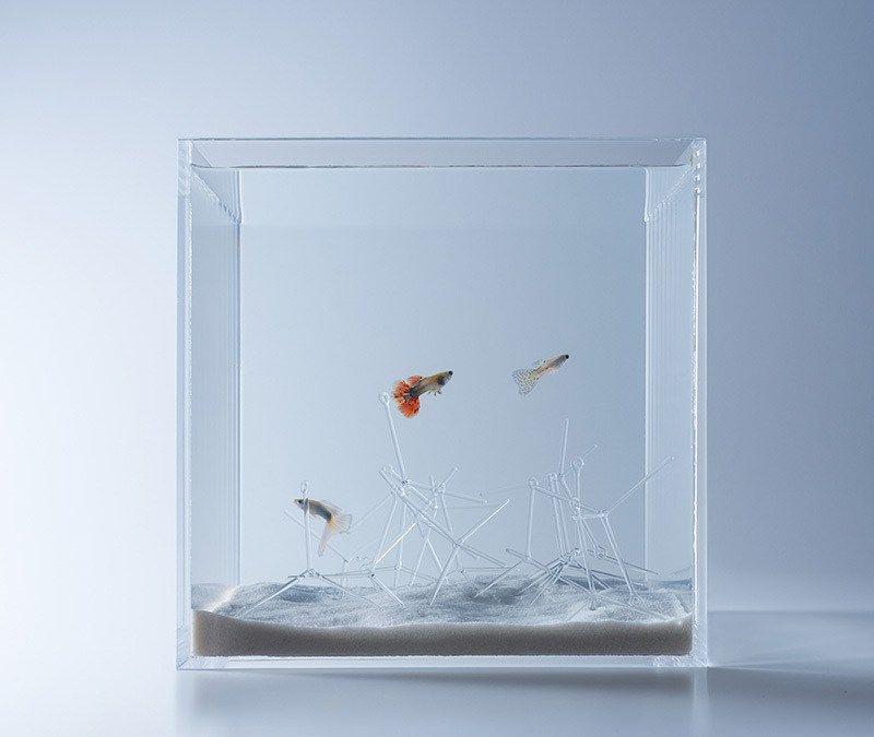 Waterscape Aquarium Exhibit Architectural Fish Tanks Waterscape Fish Tank Design Aquarium Design