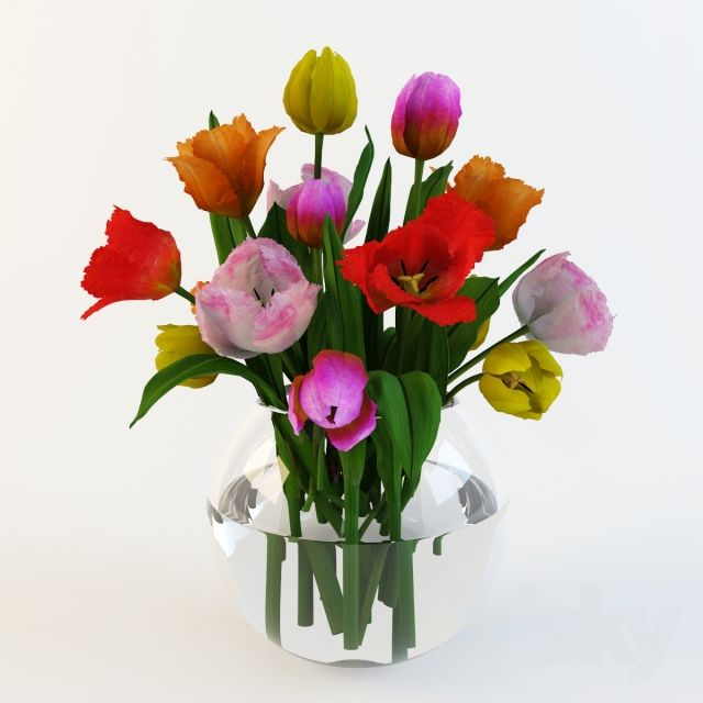 A bouquet of tulips