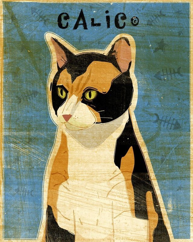 Calico Cat Print 8 In X 10 In Cat Art Print