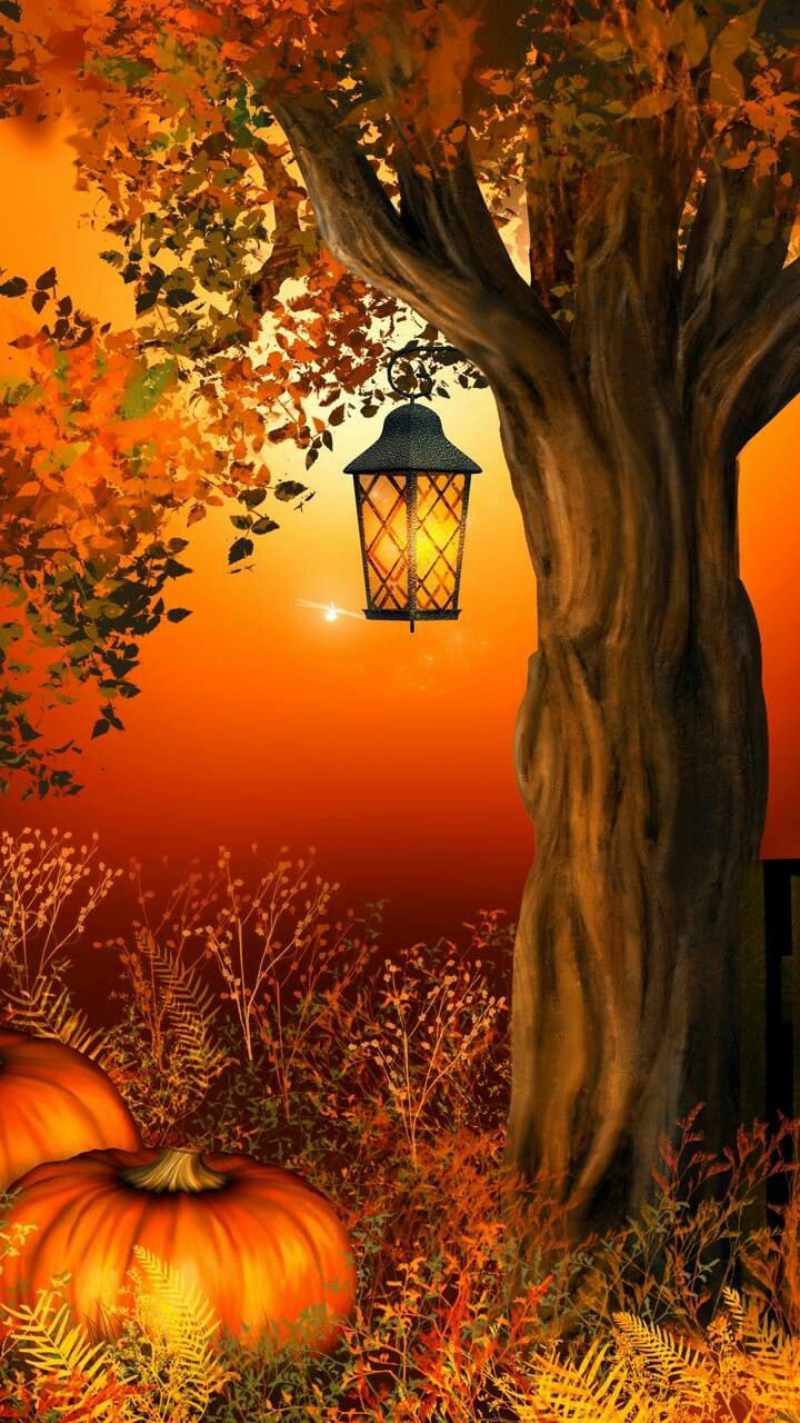 ☮ * ° ♥ ˚ℒℴѵℯ cjf #autumnscenery