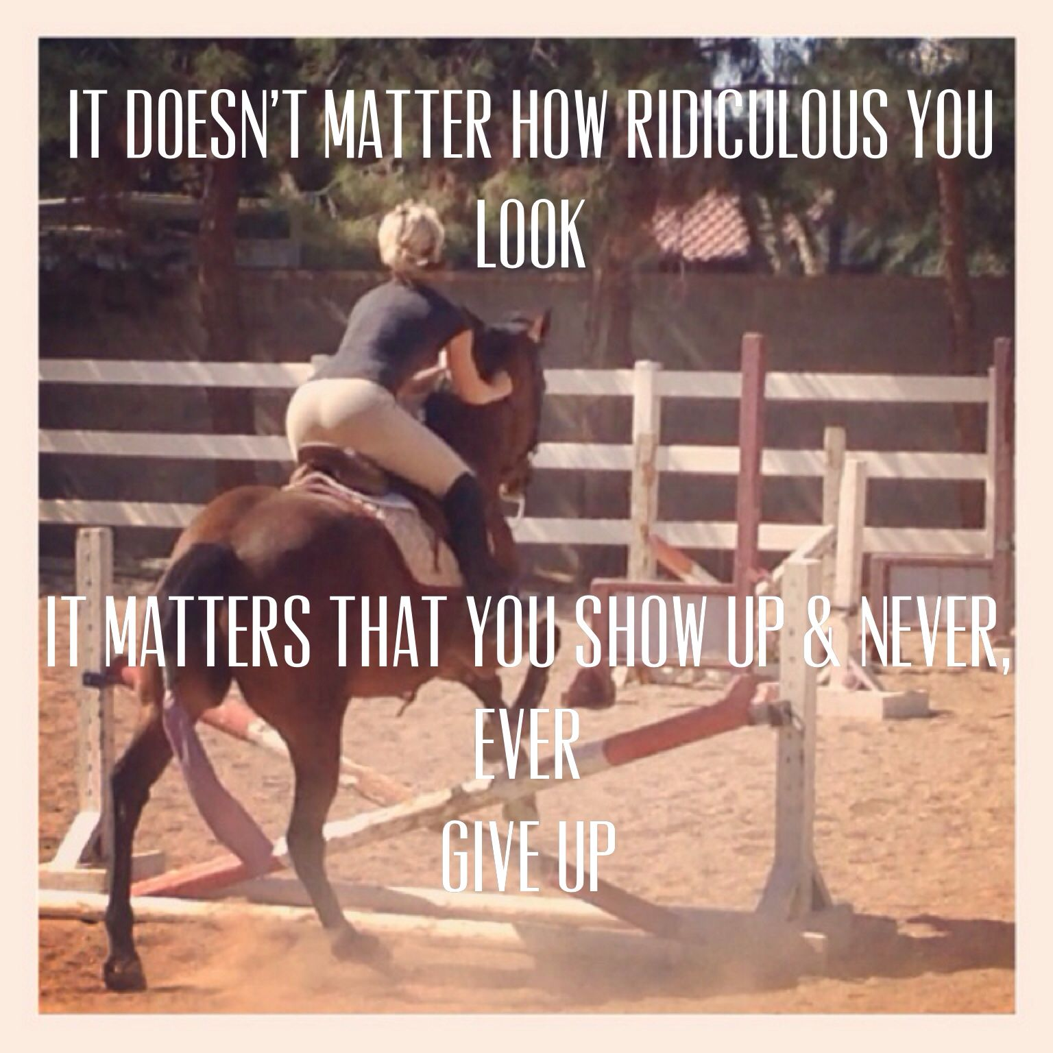 Never give up: Equestrian quote Advice | A Horse is a Horse ...