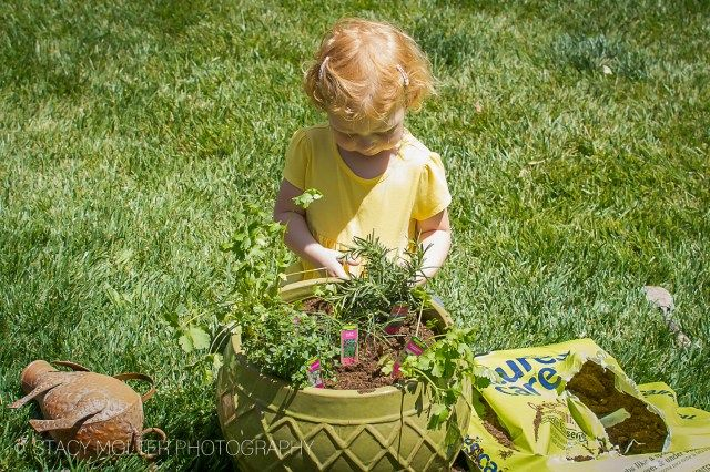 How to Plant a Herb Garden with Kids is part of garden Kids Education - A family that grows together stays together which is why we're sharing our tips on How to Plant a Herb Garden with Kids, to help get kids in the garden and in the kitchen