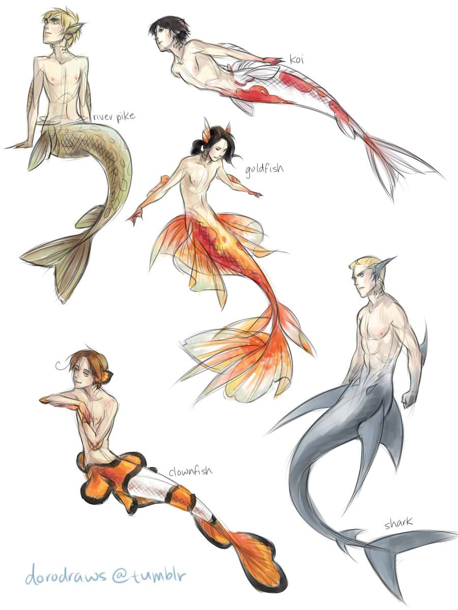 Reality and dreams collide mermaids and such pinterest for Koi fish tail