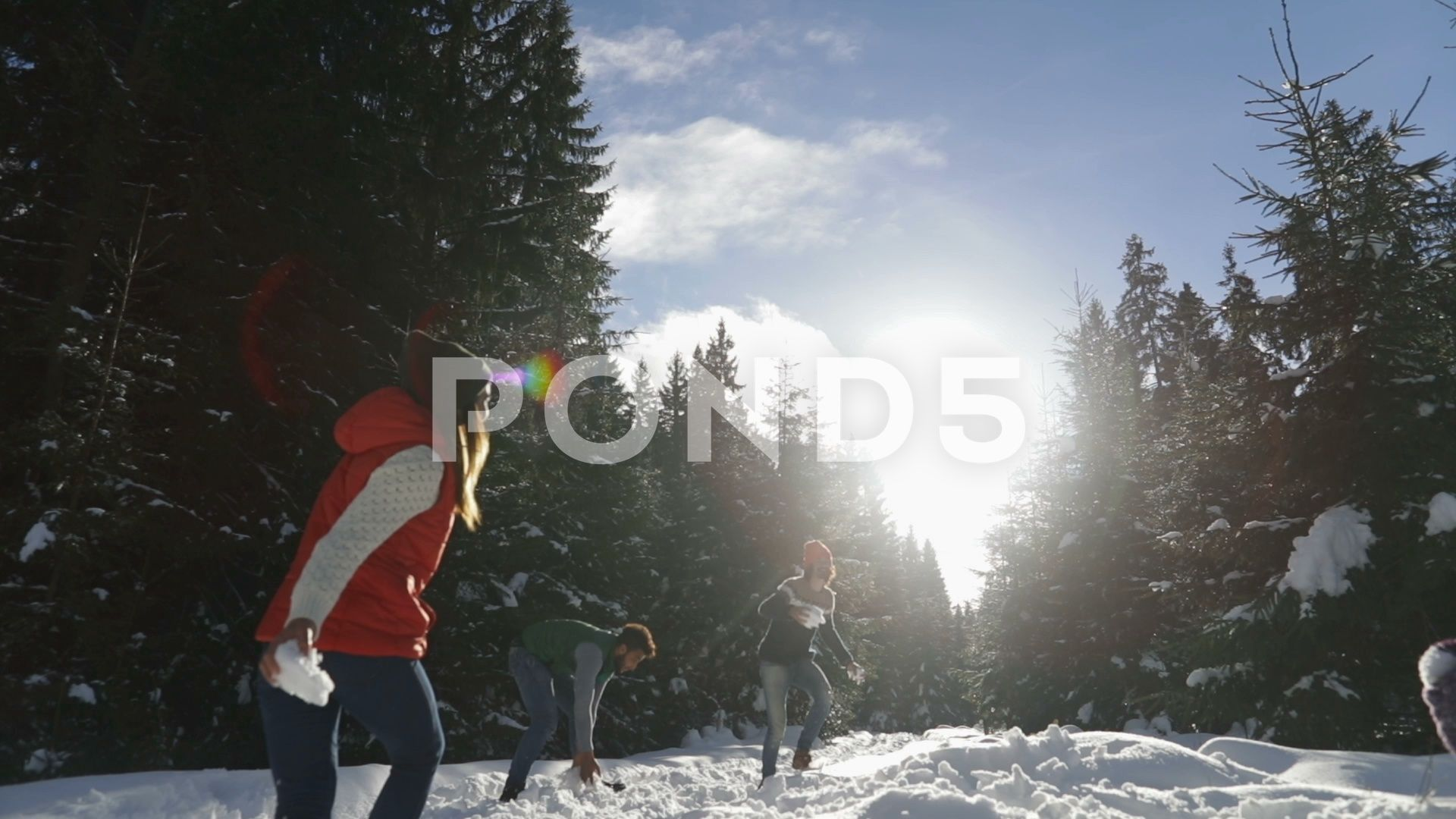 People Group Snow Forest Young Friends Having Fun Playing Snowballs Outdoor Stock Footage ForestYoungFriendsPeople