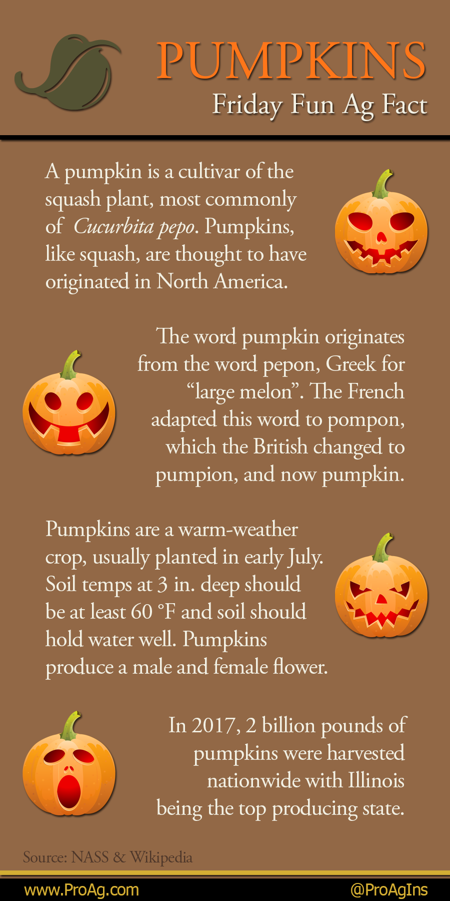 Today Is National Pumpkin Day Do You Have Your Pumpkin Ready For Halloween This Year Share A Picture Below Nationalpumpkinday Farm Facts Fall Facts Pumpkin