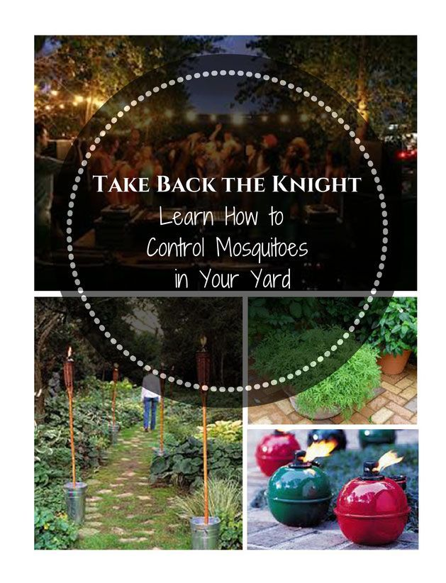 Take Back the Night. Learn How to Control Mosquitoes in ...