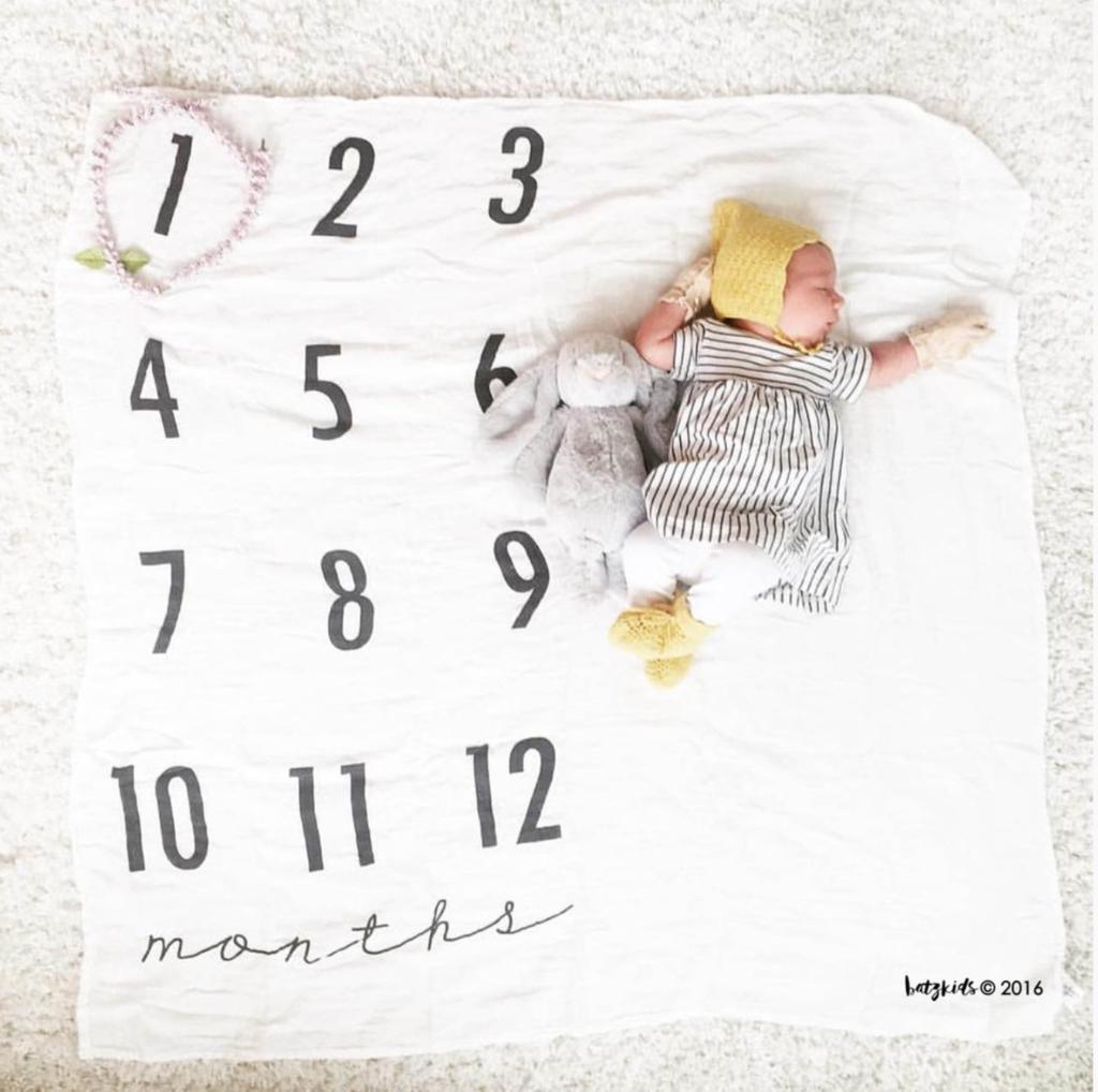 Baby Monthly Milestone Blanket™