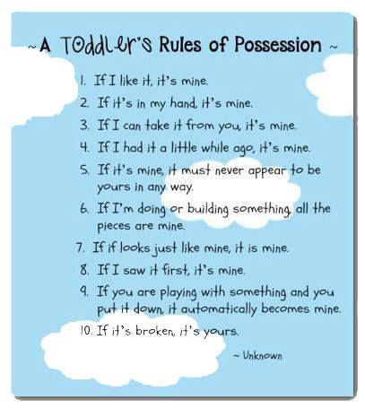 Toddler Rule Of Possession