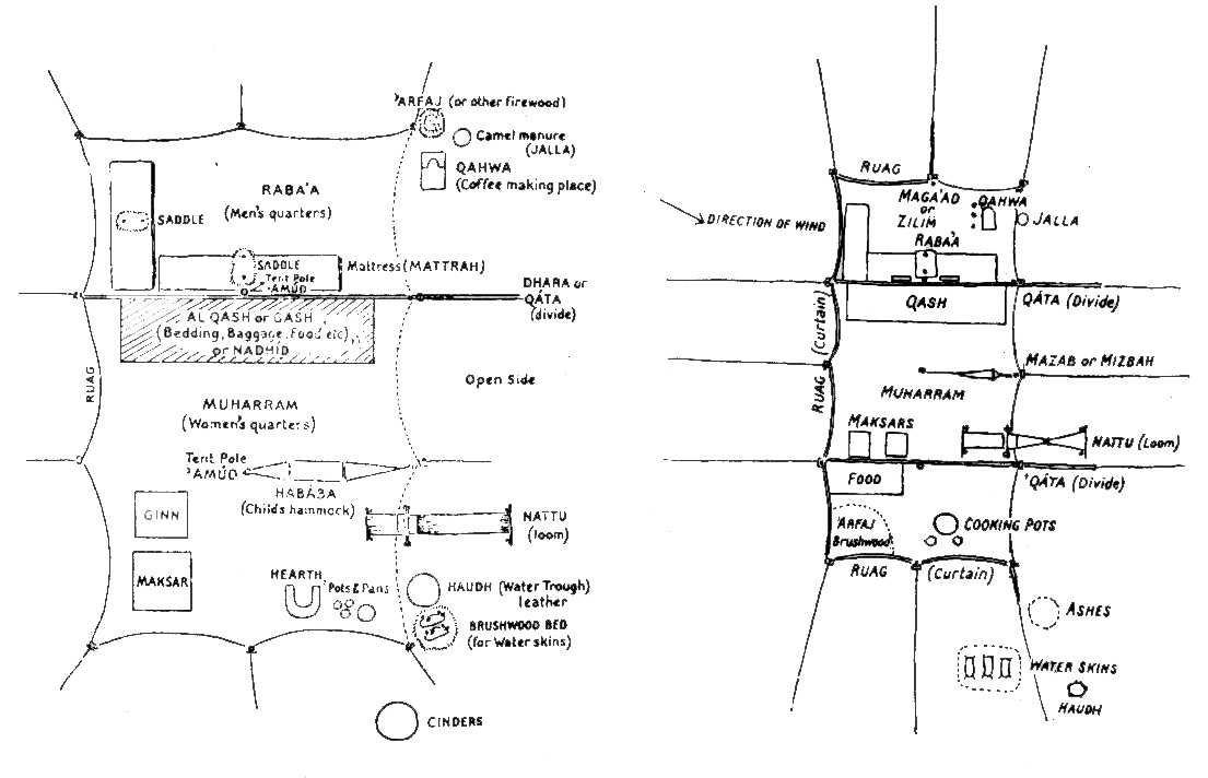 Zemmour Tent Layout - G.Cowan - Nomadology in Architecture  sc 1 st  Pinterest & Zemmour Tent Layout - G.Cowan - Nomadology in Architecture ...
