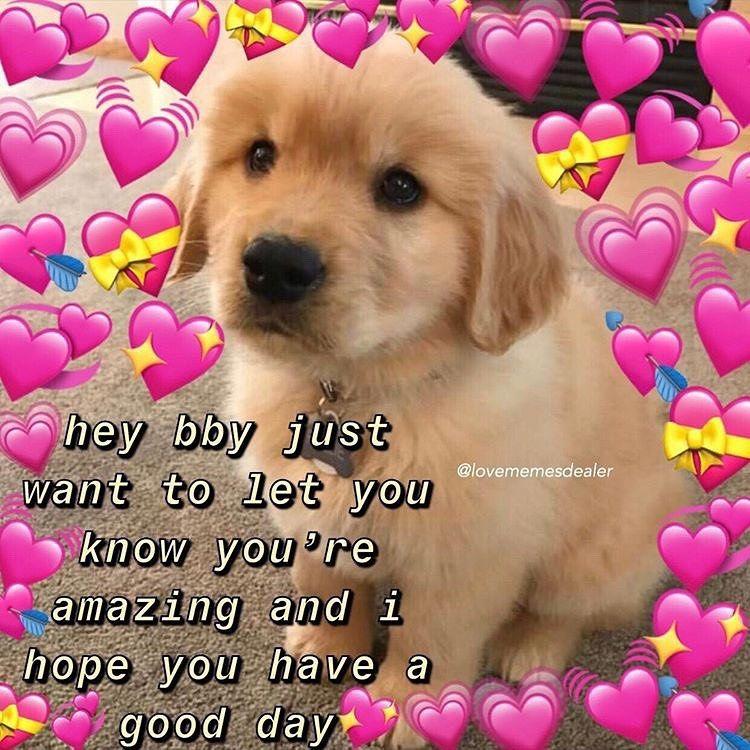 Any Plans For The Weekend Follow Lovememesdealer For More Mood Cutememe Lovememes Wholesomememes Love Memes Funny Love You Meme Funny Couples Memes