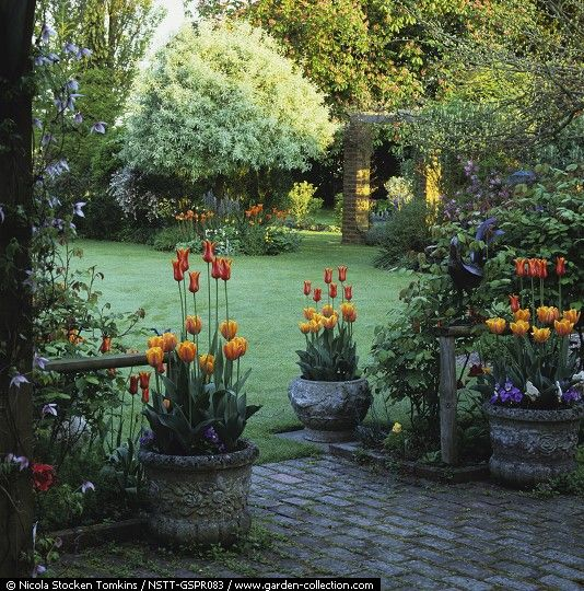 Gardening DIY Tips Ideas