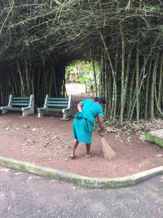 Aburi Botanical Gardens Accra Ghana Botanical Gardens Ghana Republic Of Ghana